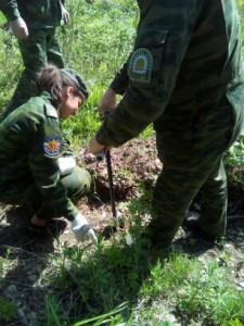 Ивановская область приняла участие в экологической акции «Всероссийский День посадки леса»